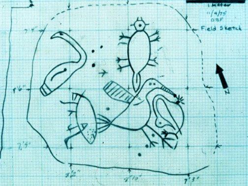 field sketch of Wildcat Branch Petroglyphs