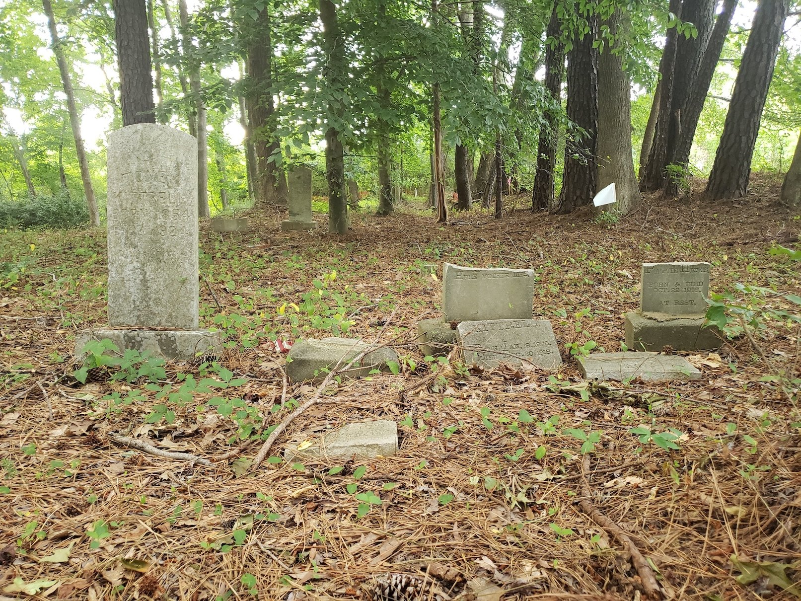 """Headstones in the Friendship Baptist Church """"Old Cemetery,"""" some showing signs of vandalism."""