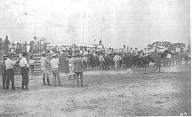 First rodeo in 1924 at the high school football field at the top of Penelope Street Hill