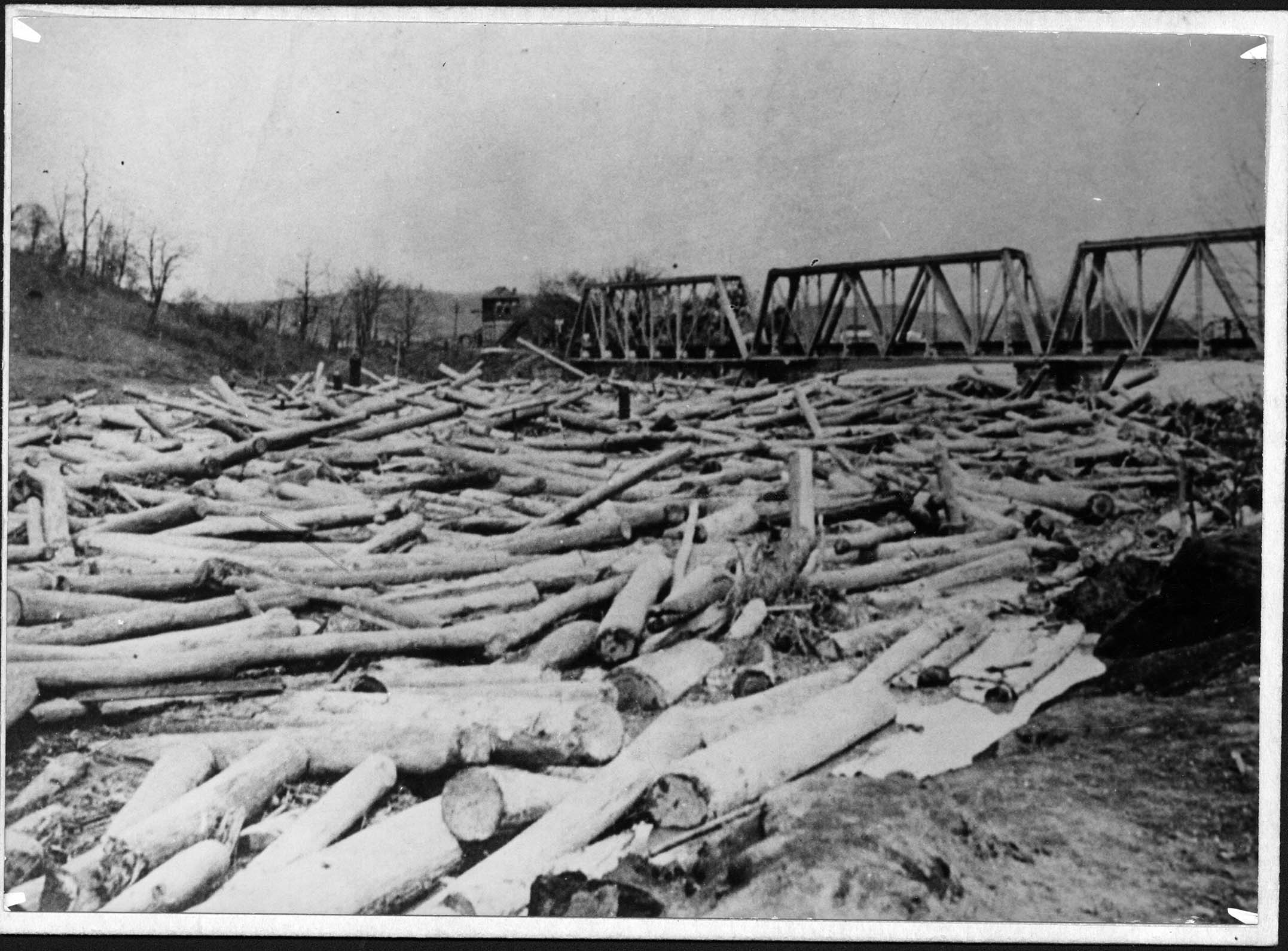 Floating logs jammed up against the bridge. Some claimed that the bridge had been weakened due to rising waters and the supports being rammed by logs. Image courtesy of Marshall University Special Collections.