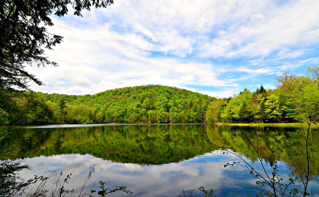 The Pogue, the park's 14-acre pond, is a man-made creation.