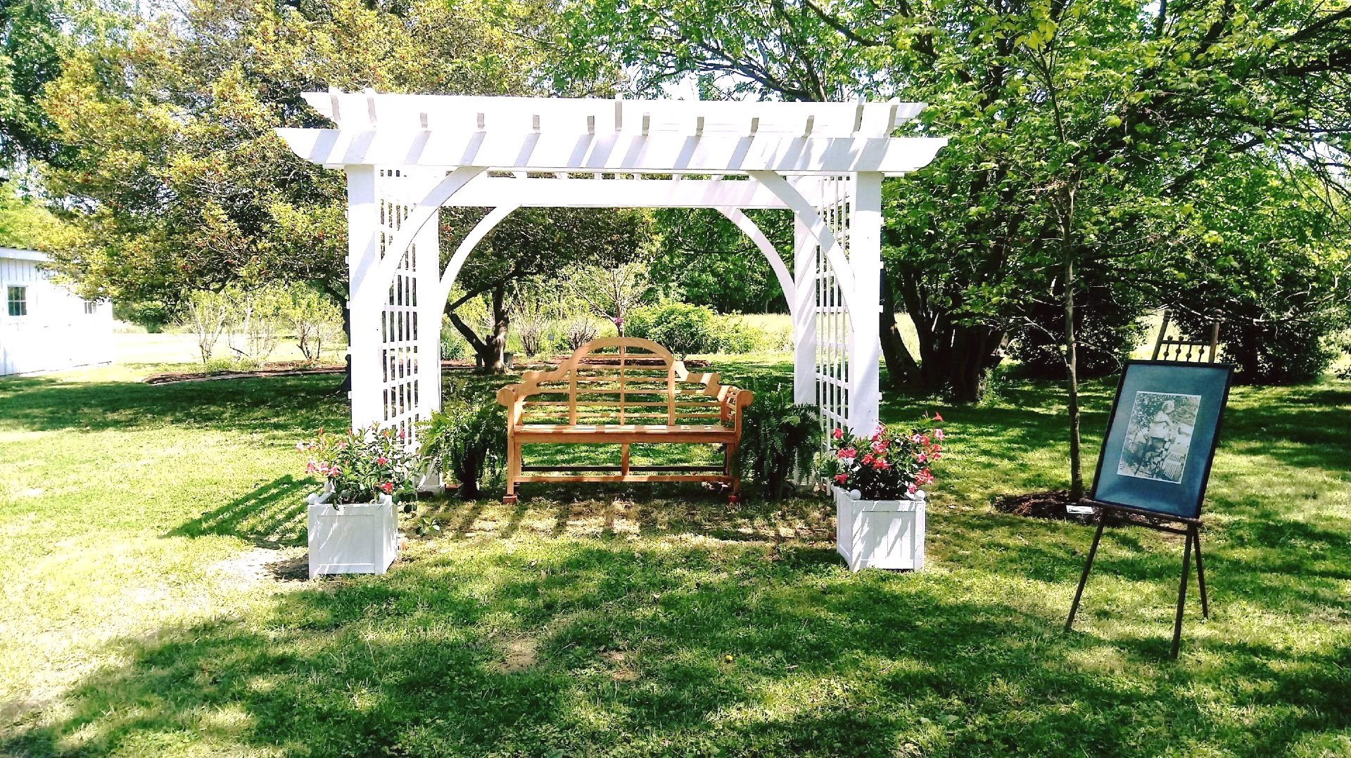 Pergola and bench in the garden.