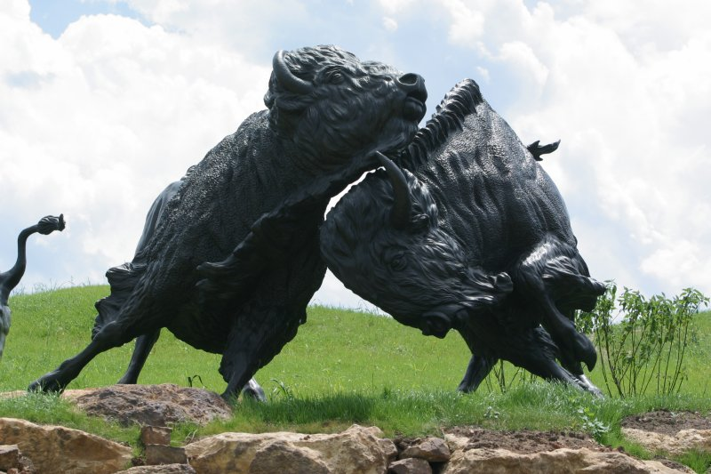 Two bison of the Lakota Bison Jump sculpture created by artist Peggy Detmers.
