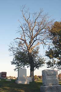 Spring Hill Cemetery is the oldest and largest cemetery in Cabell County