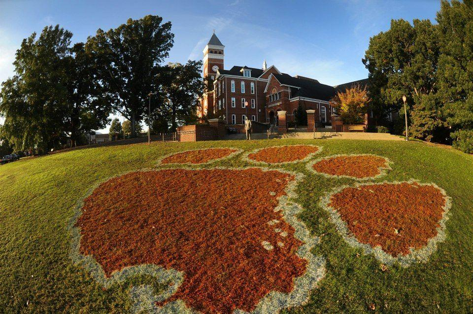 Bowman Field with a painted Clemson University Tiger Paw
