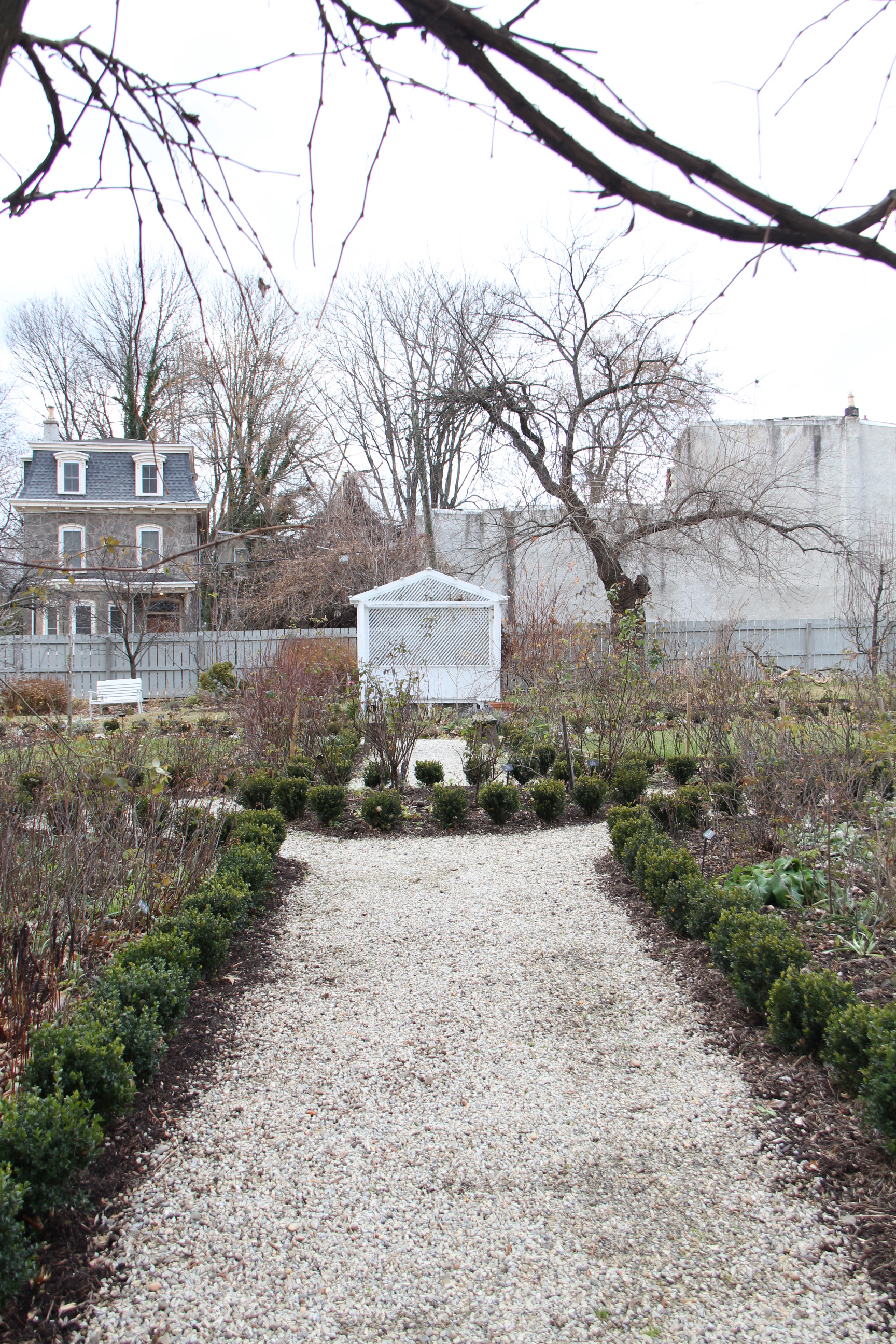 The garden with the freshly planted Little Missy boxwoods, installed in 2019