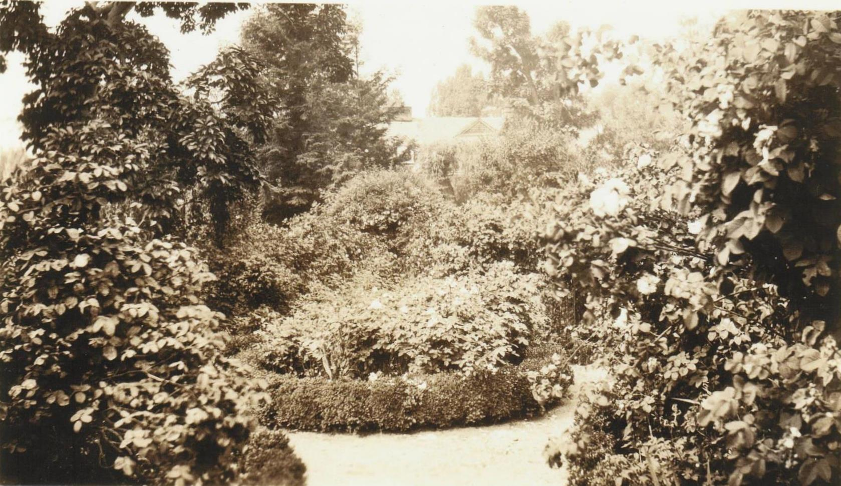 A 1915 photo of the central medallion in the garden, looking quite overgrown.