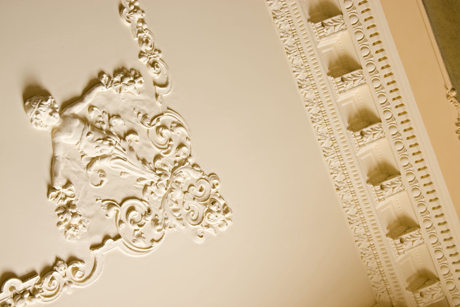 Image 5, Ornate Plaster Ceilings