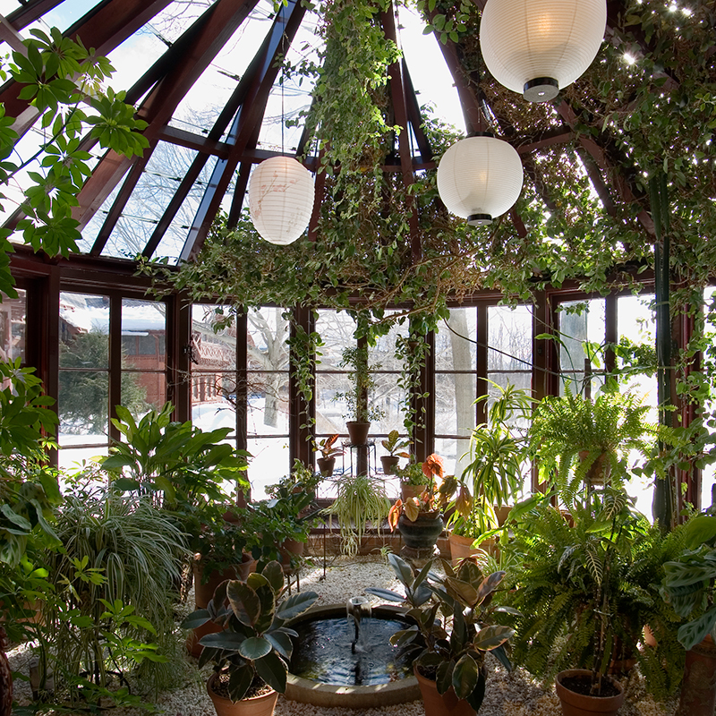 "The Conservatory: Referenced as ""The Jungle"" by the family, housed and abundance of plants and a fountain"