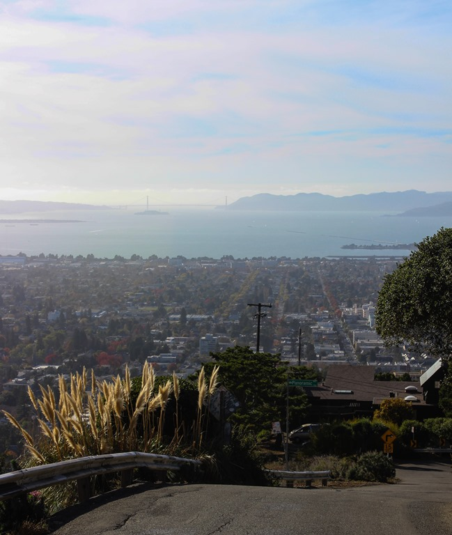 Panoramic Hill (Berkeley)