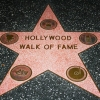 The Hollywood Walk of Fame star