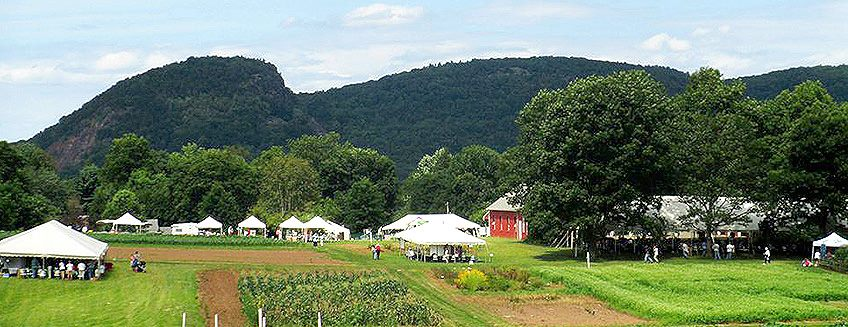 CAES' Lockwood Farm ready to host its annual Plant Science Day.