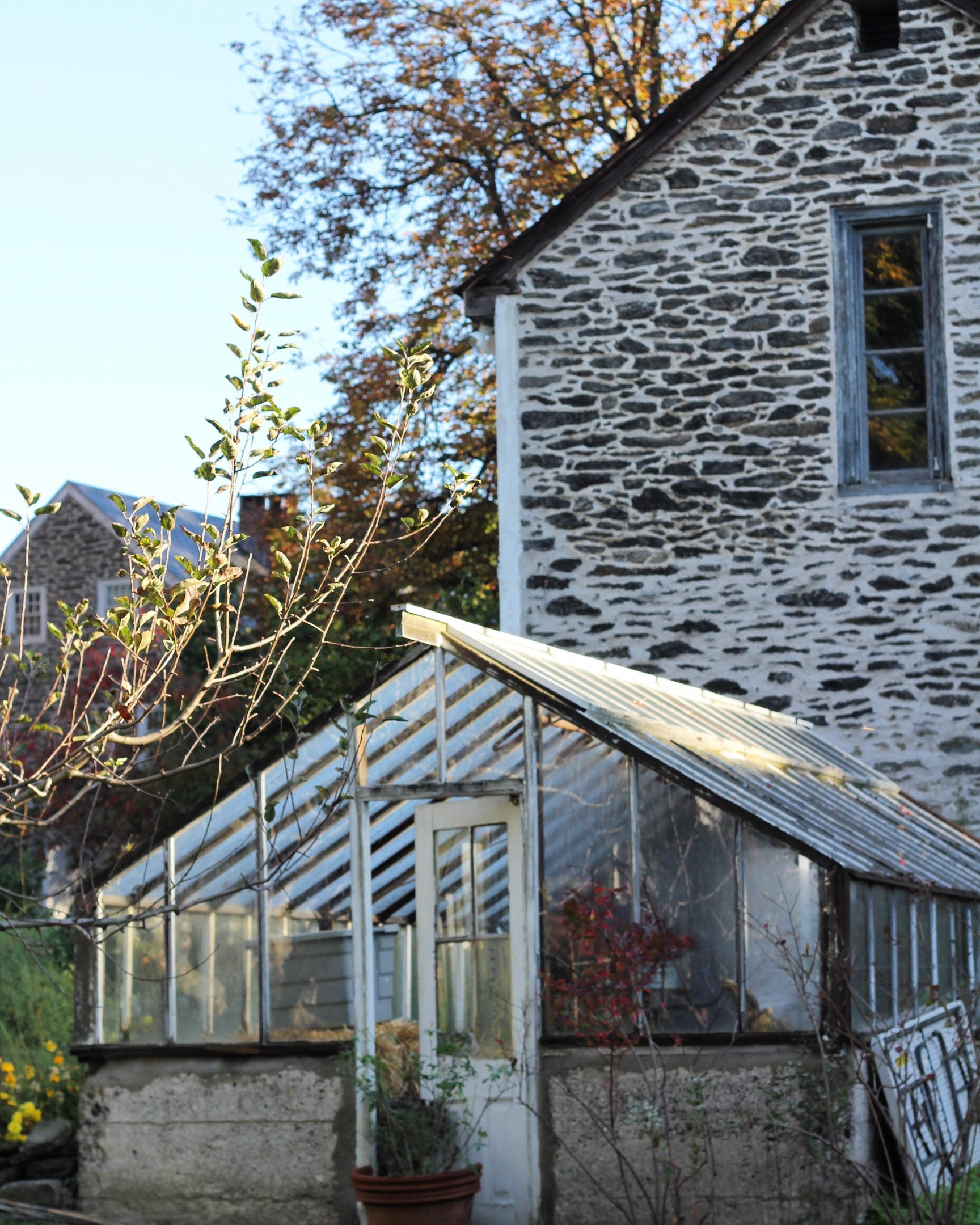 The 1914 greenhouse in front of the 1790s coach house