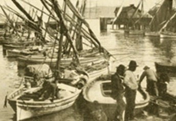 The Italian fishing fleet, circa 1900, upon being relocated to the area that later became known as Fisherman's Wharf