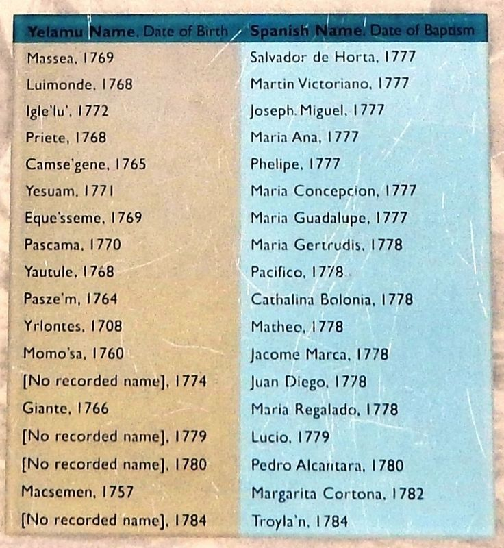 Mission San Francisco Baptism Registry, which shows the names of some of the last living people of the Yelamu tribe who came from a village called Petlenuc. Upon being baptized, each Yelamu person was given a Spanish name.