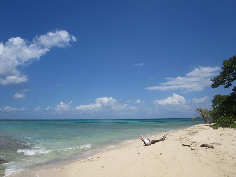 Turtle Beach on Buck Island.
