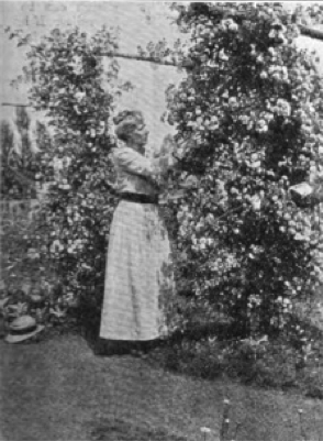 Elizabeth Leighton Lee became the new director of the school in 1915