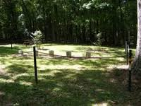Photo of Graves on summer day