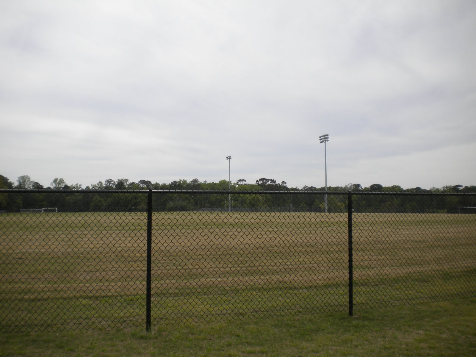 A field at the park posted by a blogger