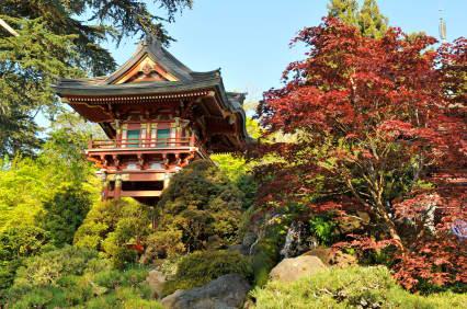 Japanese Tea Garden San Francisco Clio