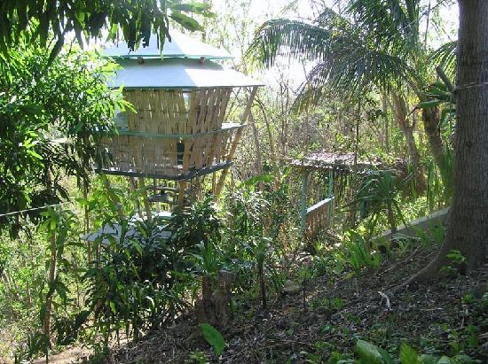 Luna Hooch, the second cabin created by Joe Scheer.