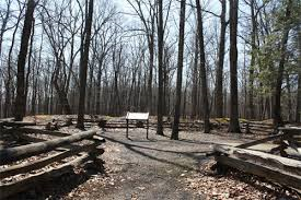 A walking trail in Fort Mill Ridge Wildlife Area takes visitors to this well-preserved Civil War trench system.