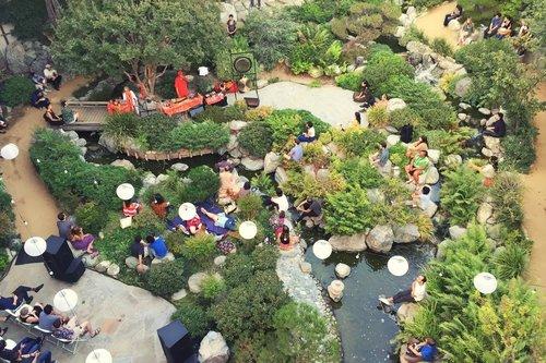 Little Tokyo garden
