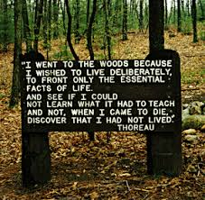 A quote from Thoreau's Walden, published in 1854. The book was received favorably in Thoreau's lifetime and has since become a classic piece of environmental literature.