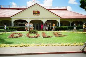 The Dole Plantation