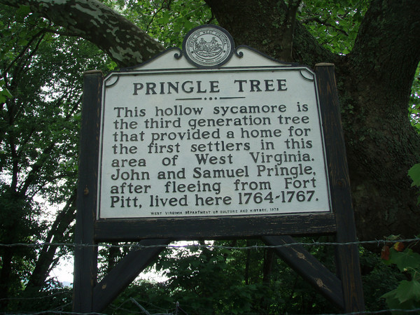Today a historical marker commeorates the story of the Pringle Tree. Image courtesy of Turner Sharp.