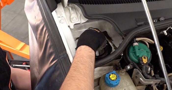 Zweckdienliche Tipps zum Austausch von Federn beim FIAT Doblo Cargo (223_) 1.9 D 2014