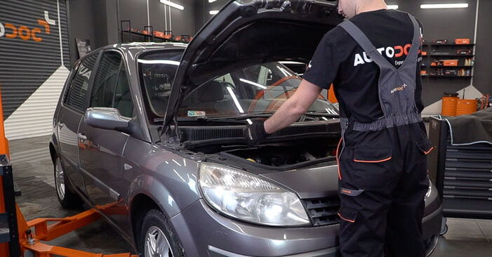 Come cambiare Molla Ammortizzatore su Renault Scenic 2 2003 - manuali PDF e video gratuiti