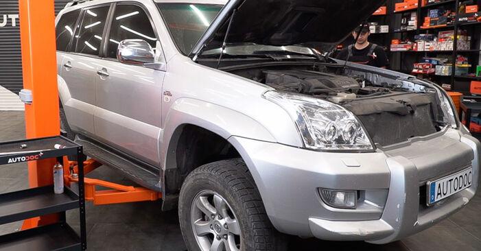 Federn Toyota Prado J120 3.0 D 2004 wechseln: Kostenlose Reparaturhandbücher