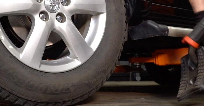 Recomendações passo a passo para a substituição de Toyota RAV4 III 2009 2.0 (ZSA35_) Molas por si mesmo