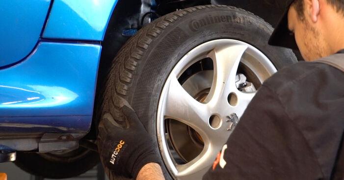 Austauschen Anleitung Federn am Peugeot 206 cc 2d 2008 1.6 16V selbst