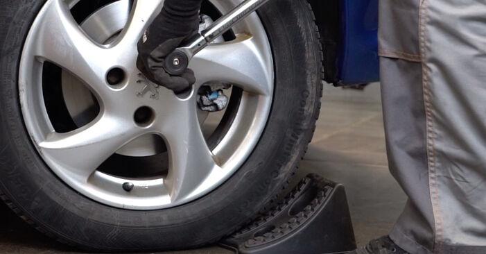 Schritt-für-Schritt-Anleitung zum selbstständigen Wechsel von Peugeot 206 cc 2d 2011 1.6 16V Federn