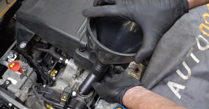 Come rimuovere FIAT PANDA 1.2 4x4 2007 Filtro Olio - istruzioni online facili da seguire
