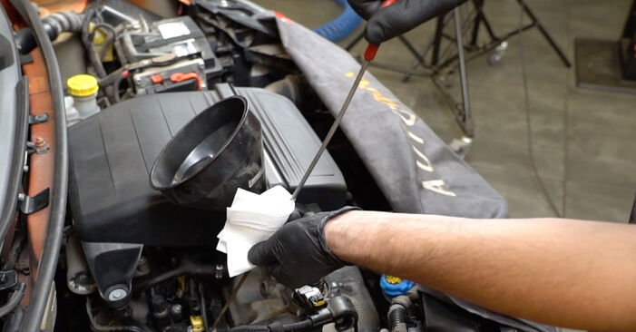 How hard is it to do yourself: Oil Filter replacement on Fiat Panda 169 1.4 2009 - download illustrated guide