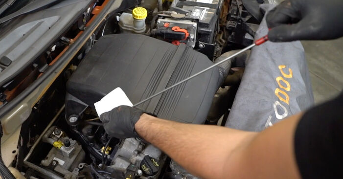 Replacing Oil Filter on Fiat Panda 169 2013 1.2 by yourself