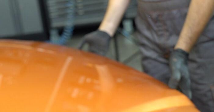 Come cambiare Filtro Olio su FIAT PANDA (169) 2015 - suggerimenti e consigli