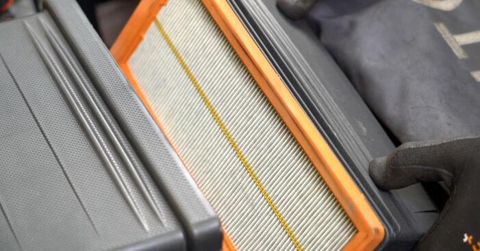 Modifica Filtro Aria su FIAT PANDA (169) 1.3 D Multijet 4x4 2006 da solo