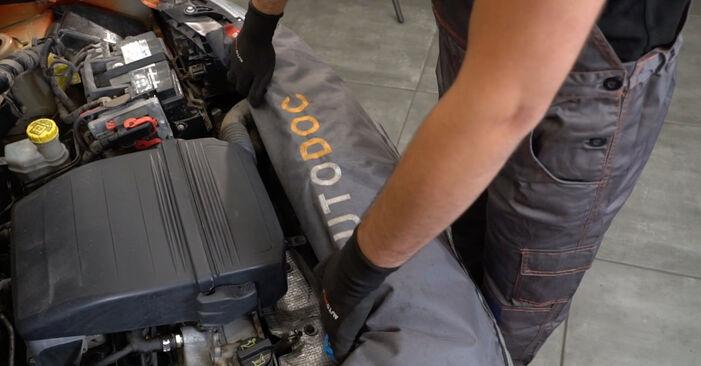 Come sostituire FIAT PANDA (169) 1.2 2004 Molla Ammortizzatore - manuali passo passo e video guide