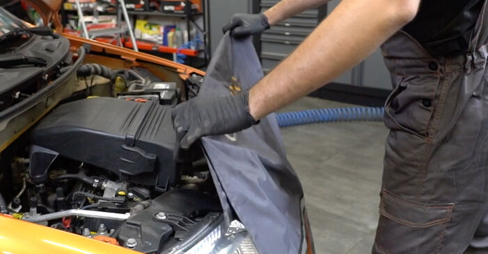 PANDA (169) 1.2 4x4 2014 Molla Ammortizzatore manuale di officina di ricambio fai da te