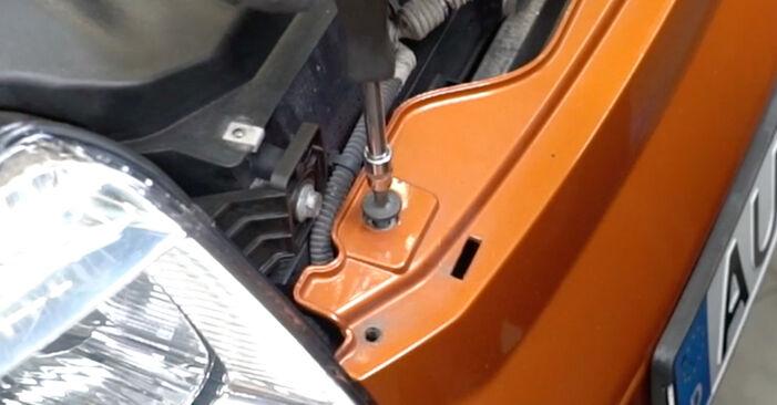 Come cambiare Fari Anteriori su Fiat Panda 169 2003 - manuali PDF e video gratuiti