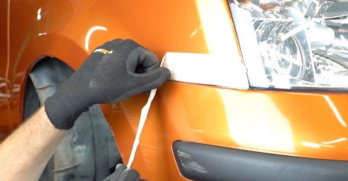 Come rimuovere FIAT PANDA 1.2 4x4 2007 Fari Anteriori - istruzioni online facili da seguire