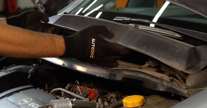Changing Springs on OPEL ZAFIRA B (A05) 1.6 (M75) 2008 by yourself