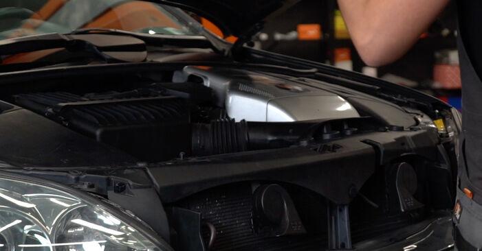 Как се сменя Пружинно окачване на Lexus RX XU30 2003 - безплатни PDF и видео уроци