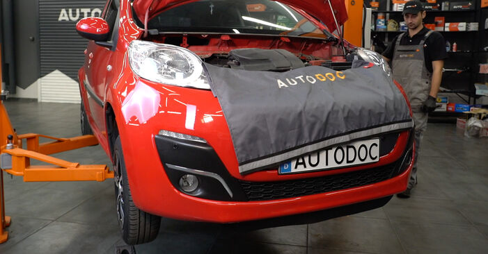 How to replace PEUGEOT 107 Hatchback (PM_, PN_) 1.0 2006 Springs - step-by-step manuals and video guides