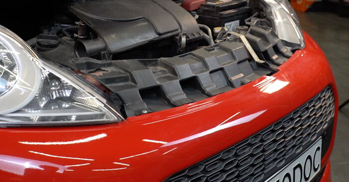 Changing Springs on PEUGEOT 107 Hatchback (PM_, PN_) 1.4 HDi 2008 by yourself