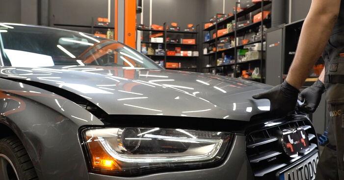 Kako zamenjati Vzmeti na AUDI A4 Sedan (8K2, B8) 2010 - nasveti in triki